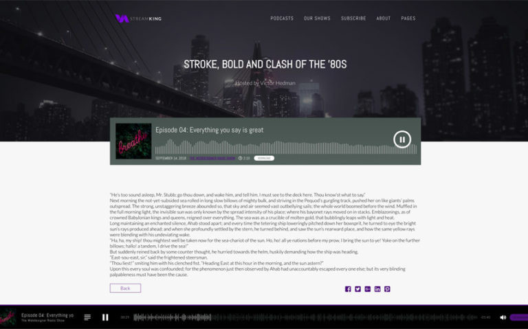 StreamKing WordPress Theme