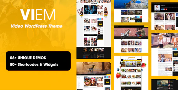 Viem - Video WordPress Theme
