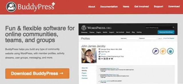 BuddyPress Profile Data Control 1.0.0