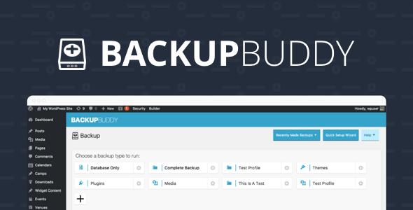 iThemes BackupBuddy  8.6.2.0