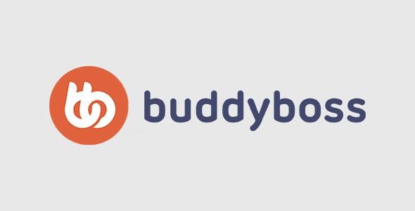 BuddyBoss Wall  1.3.8