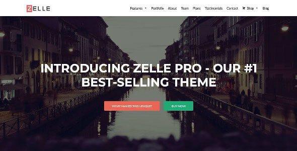 Zelle Pro (Zerif Pro)  2.1.6