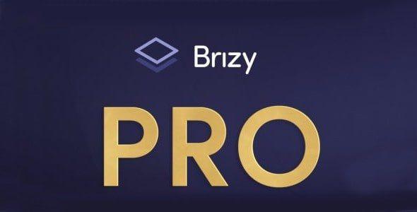Brizy Pro   2.2.11
